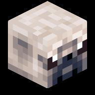 The_Pwninator head
