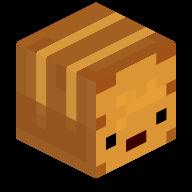ToastCz head
