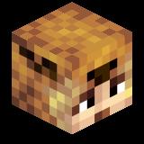 Minecraft-Server.net